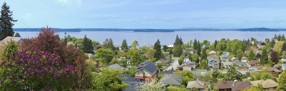 Seattle View Homes for Sale